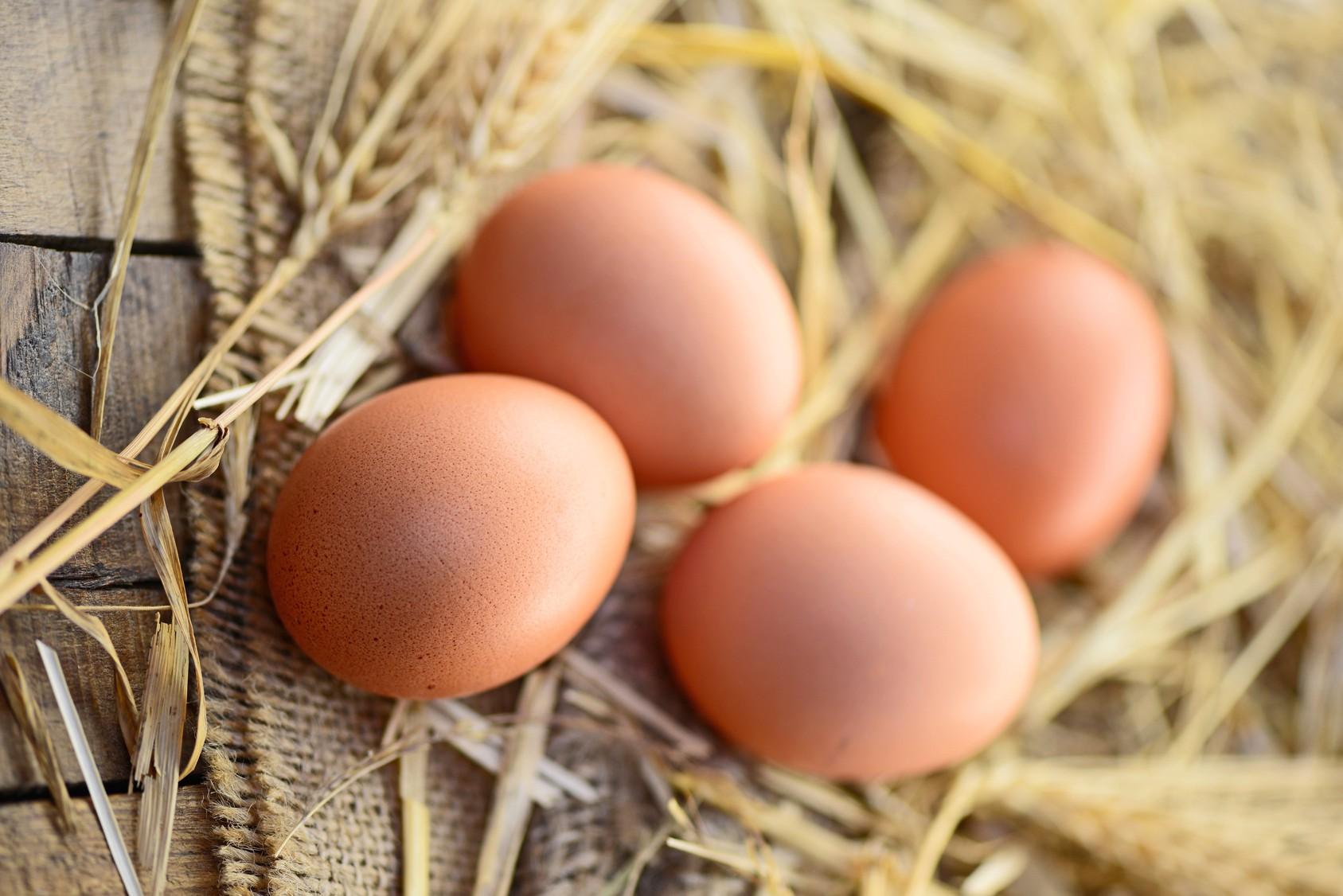 gesunde Eier