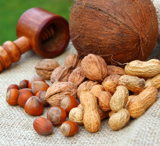 Proteine Nüsse